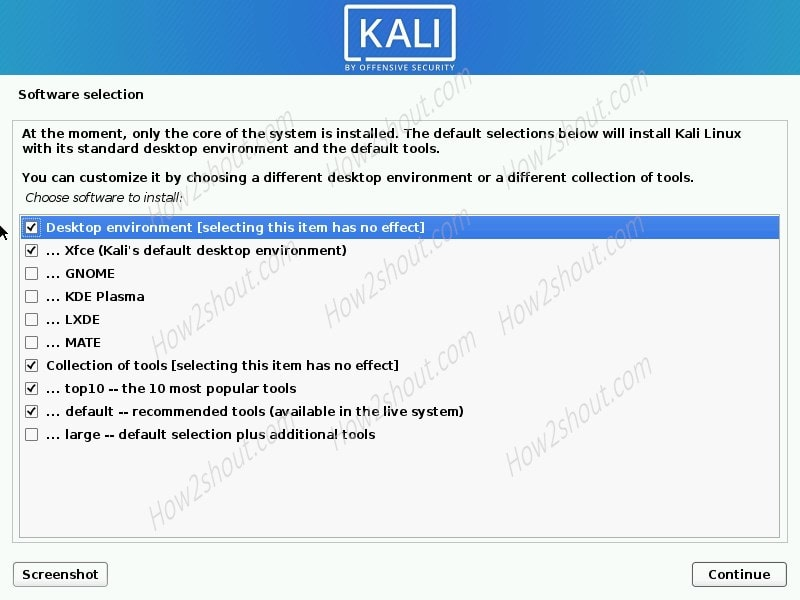 Kali Linux 2020 software during installation wizard